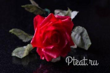 Вафельный цветок