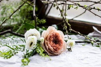 Шоколадные розы Остина